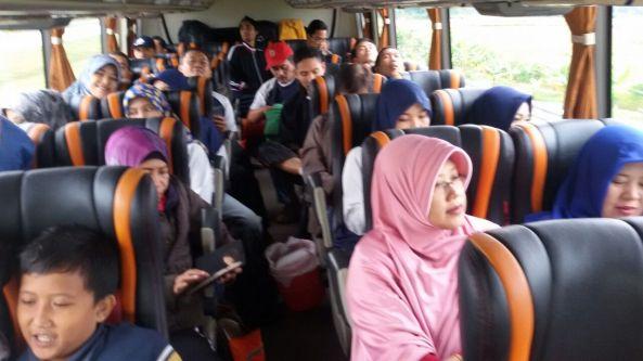 di-bus